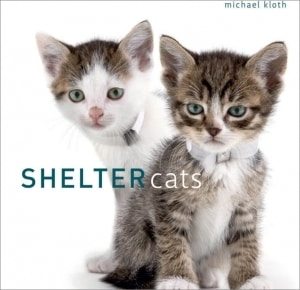 Shelter Cats Book