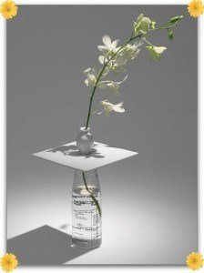 Make Any Object Into A Vase