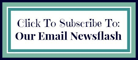 Subscribe to The Mindful Shopper's Email Newsflash