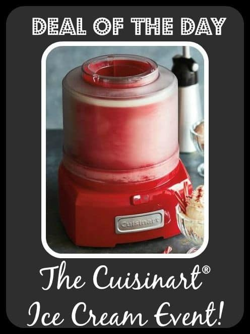 Cuisinart Classic Frozen Yogurt, Ice Cream and Sorbet Maker Event | The Mindful Shopper