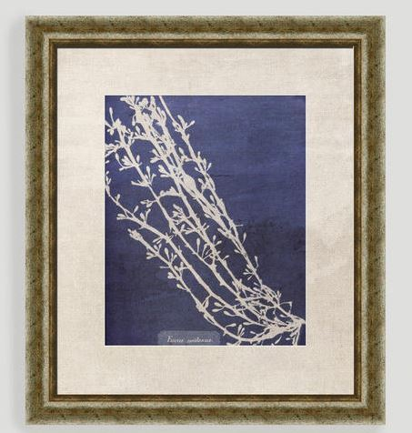 Vintage Coral Wall Art
