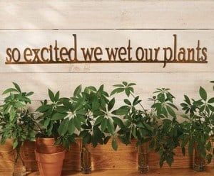 A Little Humor Garden Sign
