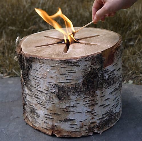 Bonfire Log