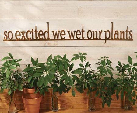 A Little Humor Garden Sign